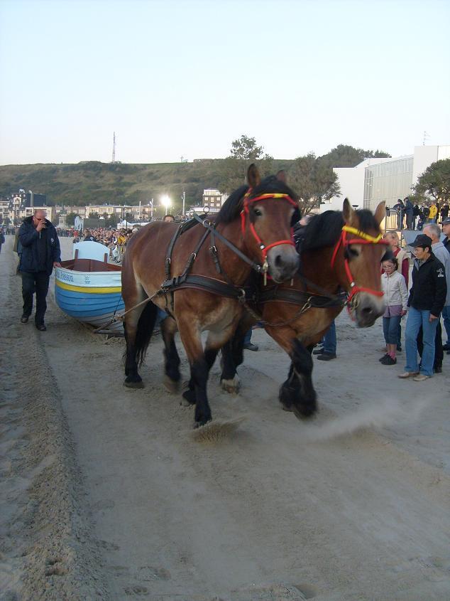 _route du poisson 2008
