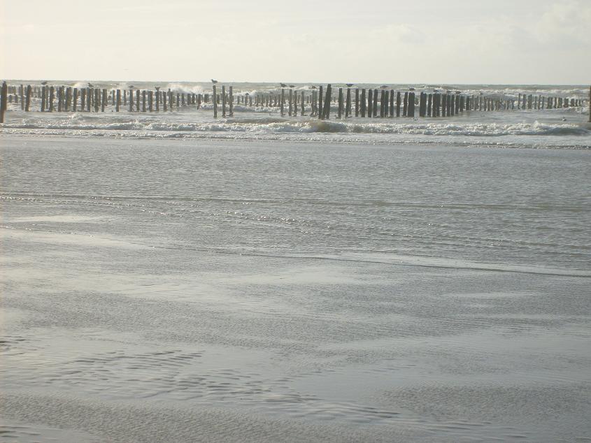 _location_vacances_pas-de-Calais