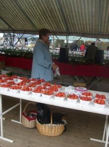 fête, fraise, Samer, location, vacances, Pas-de-Calais, Côte d'Opale, maison, gîte, appartement, weekend, midweek, semaine, last minute