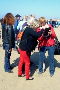location, vacances, Pas-de-Calais, Côte d'Opale, maison, gîte, appartement, weekend, midweek, les admirateurs de la Côte d'Opale, Berck-sur-Mer, RICV, cerfs-volants, semaine, last minute