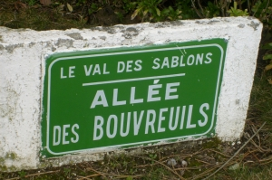 Bouvreuil
