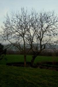 Saint Etienne au Mont.JPG