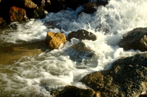 Sainte Cécile Ruisseau de Dannes-003.JPG